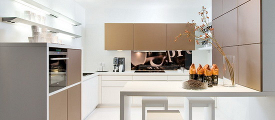 Modern White-Collar Favourite Kitchen Design